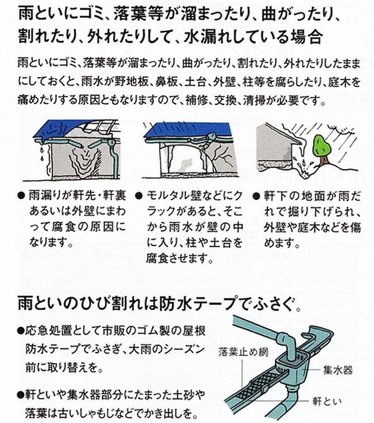 雨樋の点検